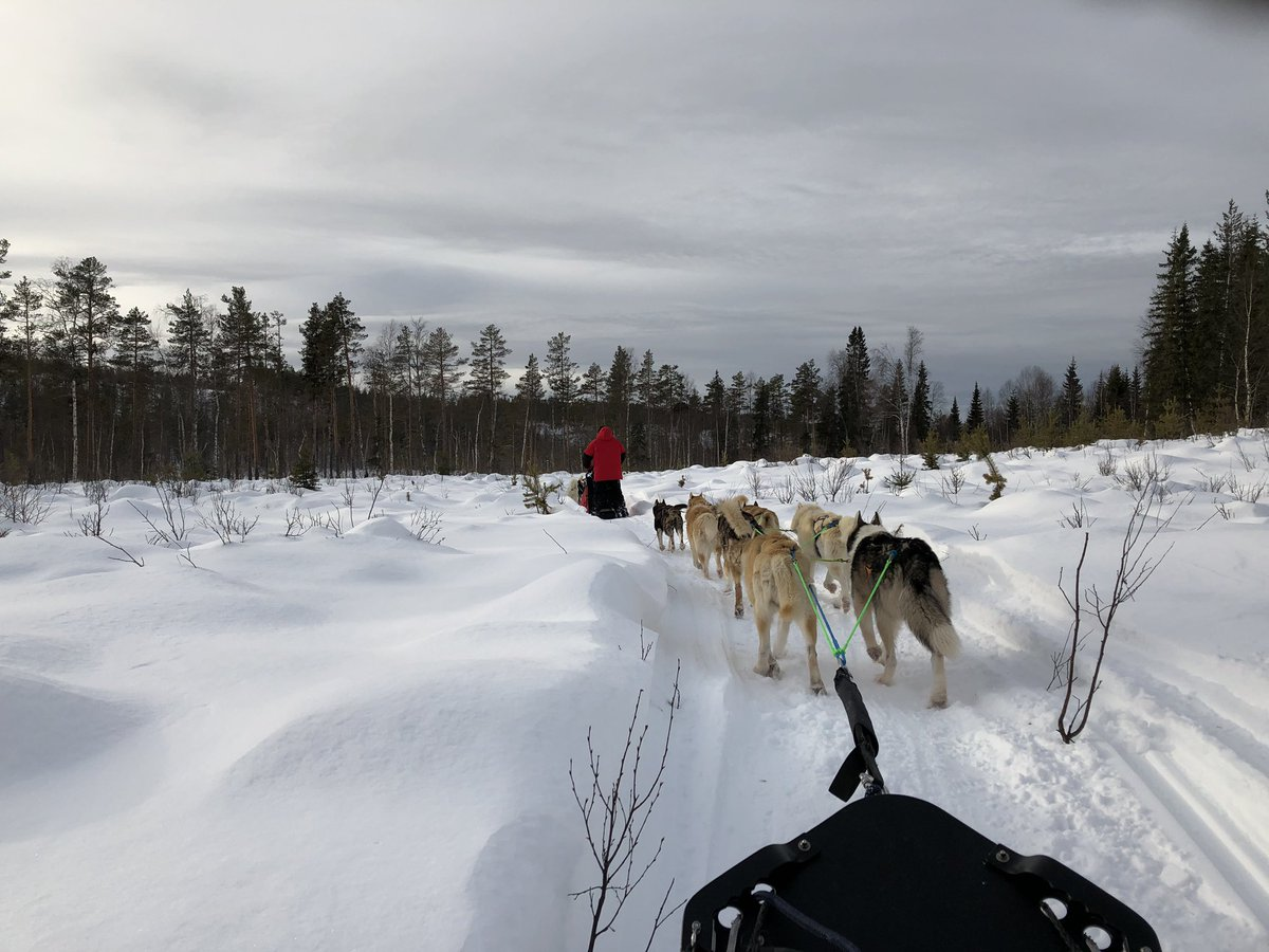 Arctic Adventure 2019; Pupil Blogs; Days 6-7